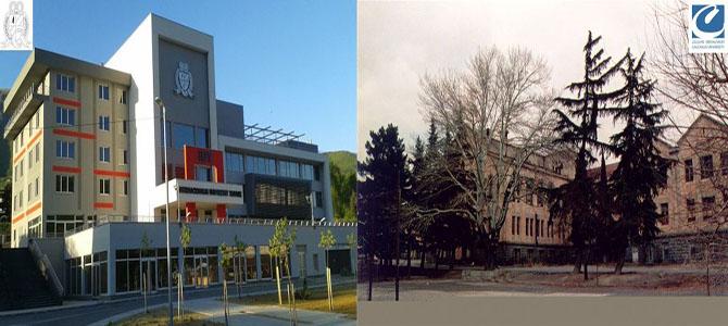 University Of Goergia